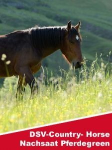 DSV-Country Horse Nachsaat Pferdegreen 2118