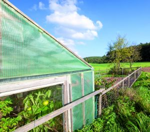 Florafol Gitterfolie - Die Gartenbaufolie