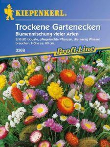 Blumenmischung für trockene Gartenecken