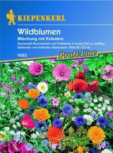 Wildblumen Mischung mit Kräutern