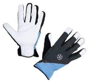 Winterhandschuh Polartex