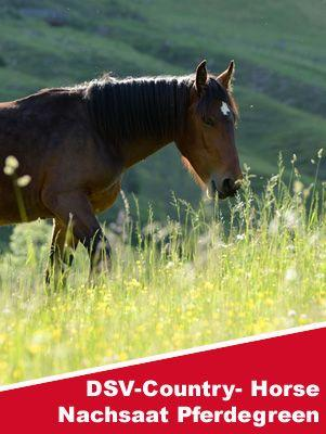 DSV COUNTRY-Horse Nachsaat Pferdegreen