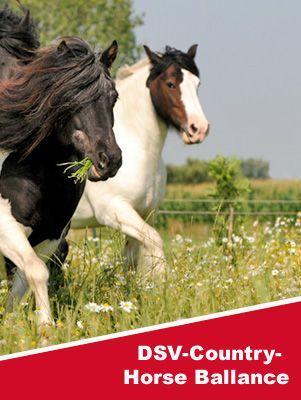 DSV COUNTRY-Horse Balance