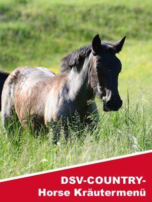 DSV-COUNTRY-Horse Kräutermenü