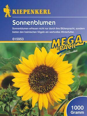 Tüte Sonnenblume-Peredovick 1kg