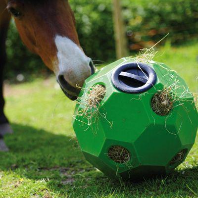 Fütterungsball (Öffnung)