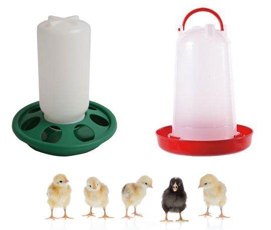 Wasser- und Futter-Spender für Küken