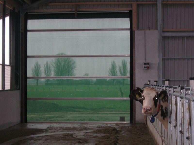 Innenansicht bzw. Durchsicht Stabitor mit grünem Windschutz
