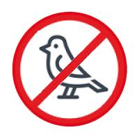 Gegen Vögel