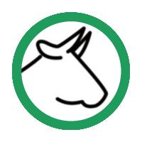 für Rinder und Kühe