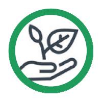 Saatgut und Zubehör
